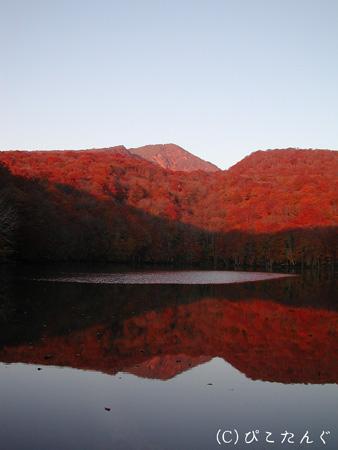 紅葉の蔦沼と赤倉岳