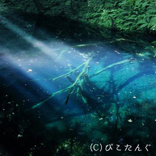 ©ぴこたんぐ北海道・北東北・写真集